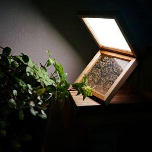 絹アクリル法相華紋のライト