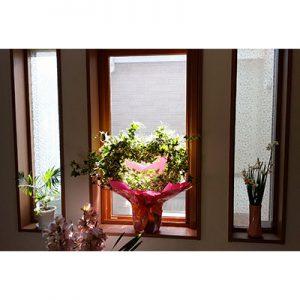 絹ガラスSilkGlassm桜重ね柄の事例